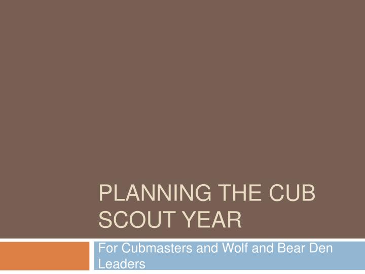 planning the cub scout year n.