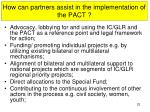 how can partners assist in the implementation of the pact