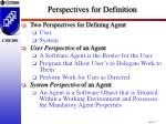perspectives for definition