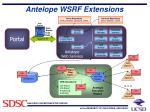 antelope wsrf extensions