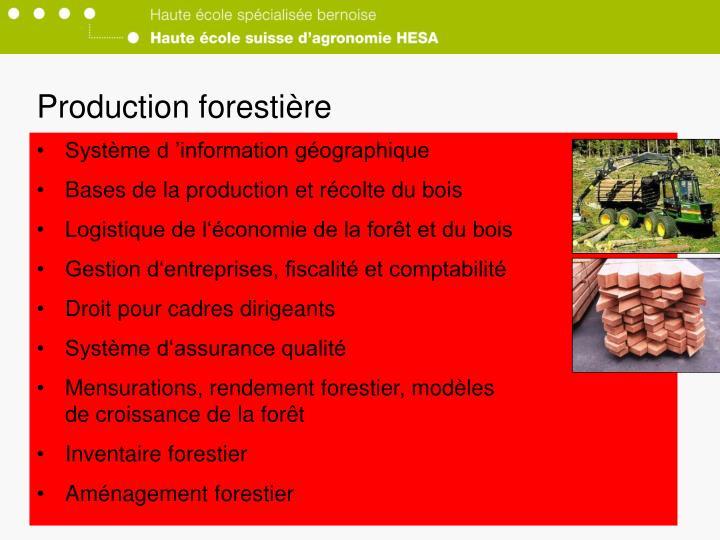 Production forestière