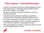 policy options international bodies