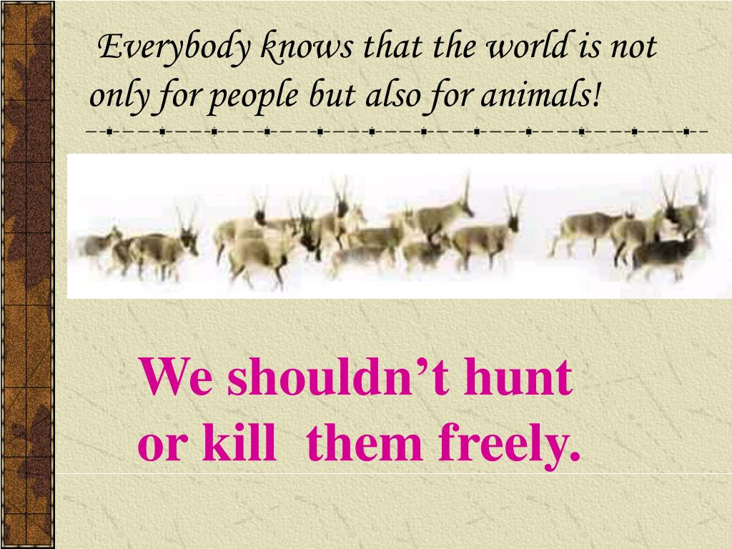 Everybody knows that the world is not only for people but also for animals!