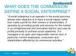 what does the commission define a social enterprise