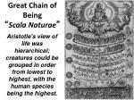 great chain of being scala naturae