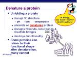 denature a protein