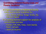 quantifying national poverty lines and poverty incidence