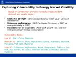 capturing vulnerability to energy market volatility