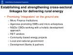 establishing and strengthening cross sectoral linkages for delivering rural energy