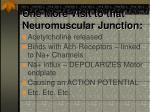 one more visit to that neuromuscular junction