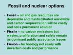 fossil and nuclear options