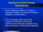 resiliency work group hypotheses