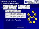 density matrix and reduced density matrix