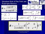 quantum state of one node and pauli spin matrices1