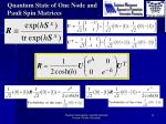 quantum state of one node and pauli spin matrices2