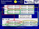 reduced density matrix