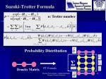 suzuki trotter formula1