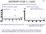 entropy for 1 1 bho