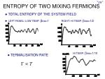 entropy of two mixing fermions