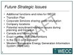 future strategic issues