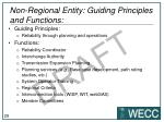 non regional entity guiding principles and functions