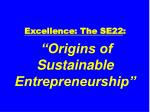 excellence the se22 origins of sustainable entrepreneurship