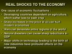 real shocks to the economy