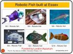 robotic fish built at essex