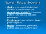 stomach related secretions