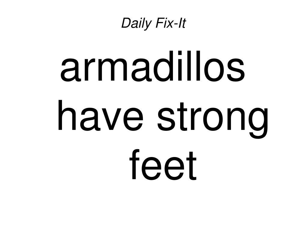 daily fix it armadillos have strong feet l.