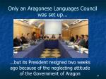 only an aragonese languages council was set up
