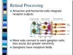 retinal processing1