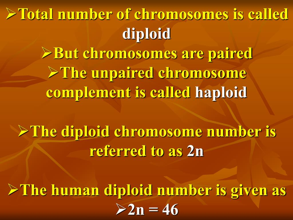 Total number of chromosomes is called