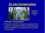 ex situ conservation