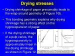 drying stresses