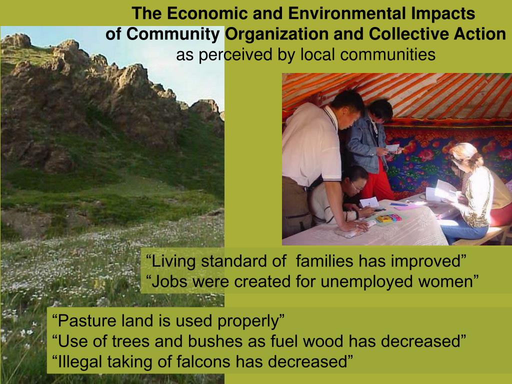 The Economic and Environmental Impacts