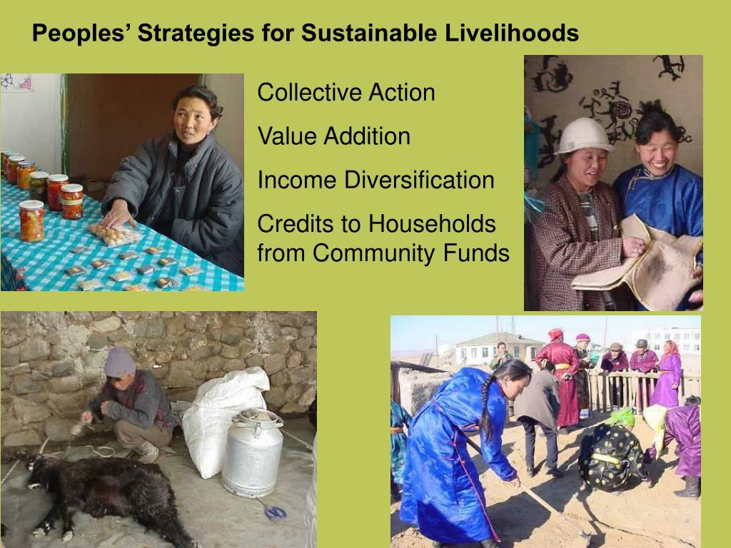 Peoples' Strategies for Sustainable Livelihoods