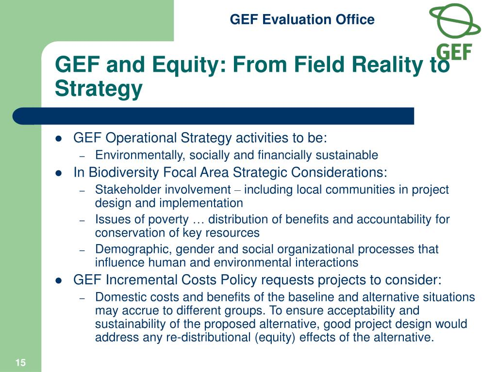 GEF and Equity: From Field Reality to Strategy