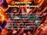 hybrid genre blending and borrowing