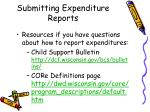submitting expenditure reports