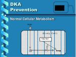 dka prevention