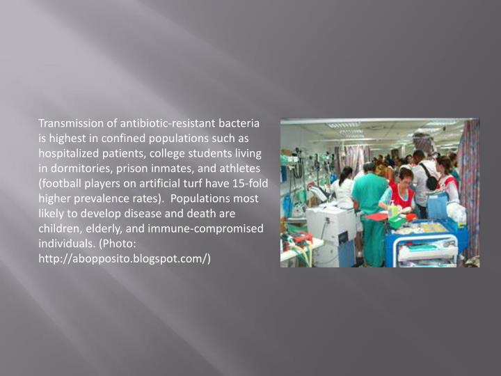 Transmission of antibiotic-resistant bacteria is highest in confined populations such as hospitalized patients, college students living in dormitories, prison inmates, and athletes (football players on artificial turf have 15-fold higher prevalence rates).  Populations most likely to develop disease and death are children, elderly, and immune-compromised individuals. (Photo: http://abopposito.blogspot.com/)