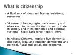 what is citizenship