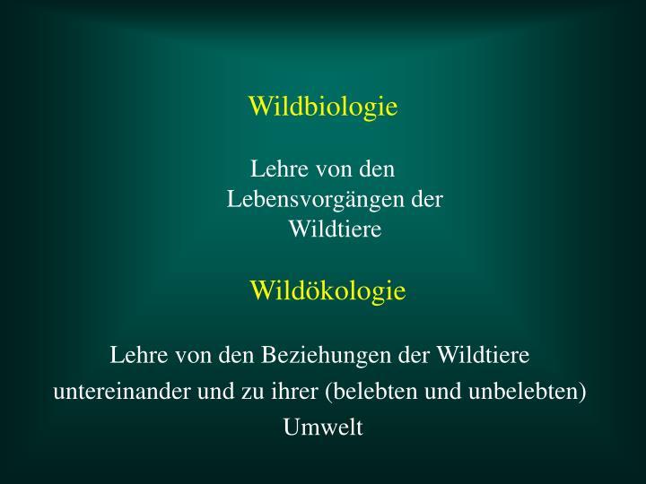 Wildbiologie