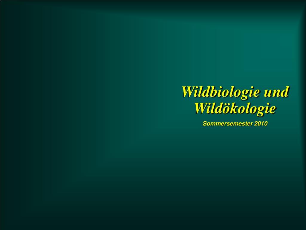 Wildbiologie und Wildökologie