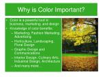 why is color important
