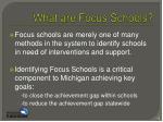 what are focus schools1