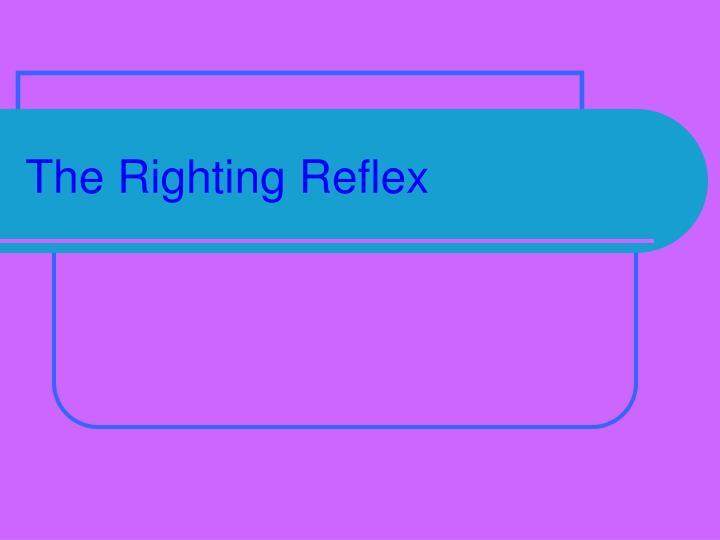 The Righting Reflex