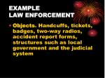 example law enforcement