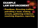 example law enforcement1